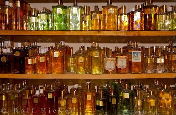 разнообразие парфюма Прованса